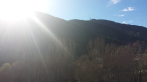 Sol d'hivern